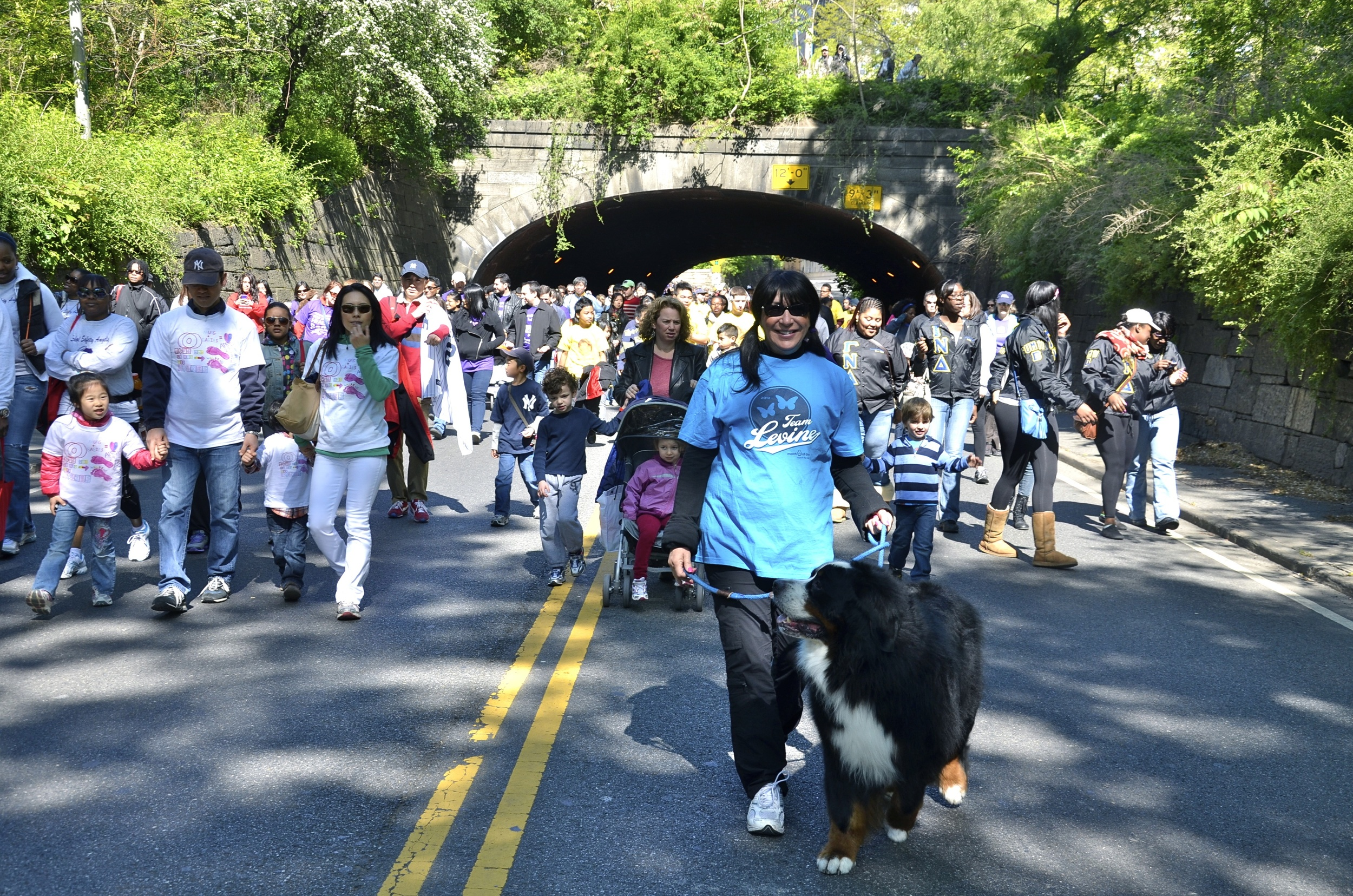 sharyn--benny-levine-walking-through-central-park-at-the-2012-march-for-babies-walk_8539152665_o.jpg