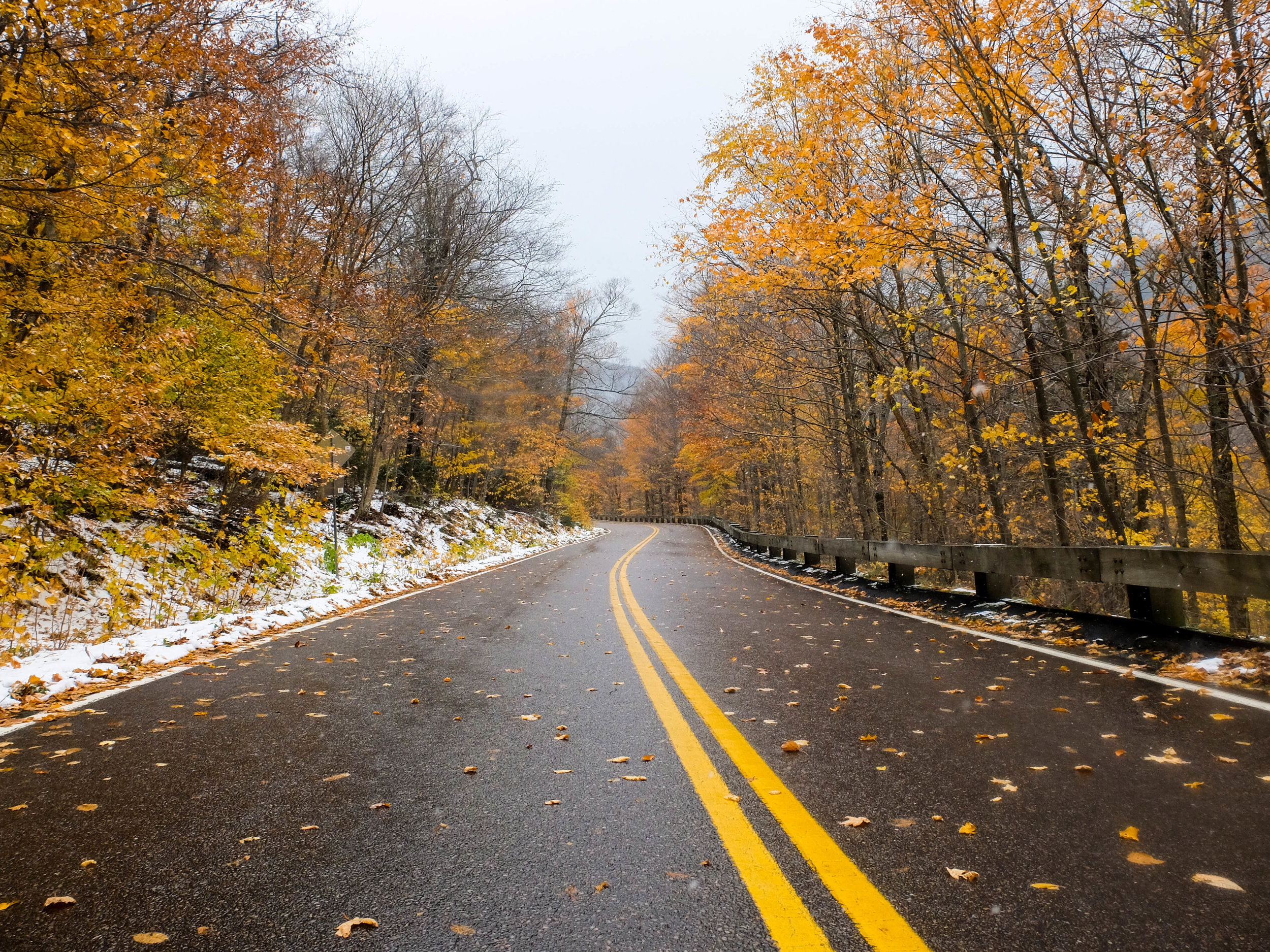 November - Mixing of the seasons, snow flurries covering late season foliage in Vermont's Smugglers Notch