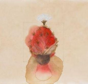 Body Blossom