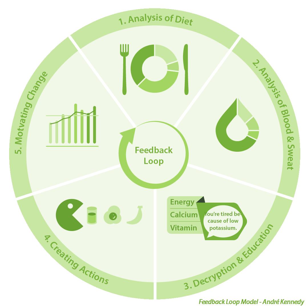The feedback loop_3.png