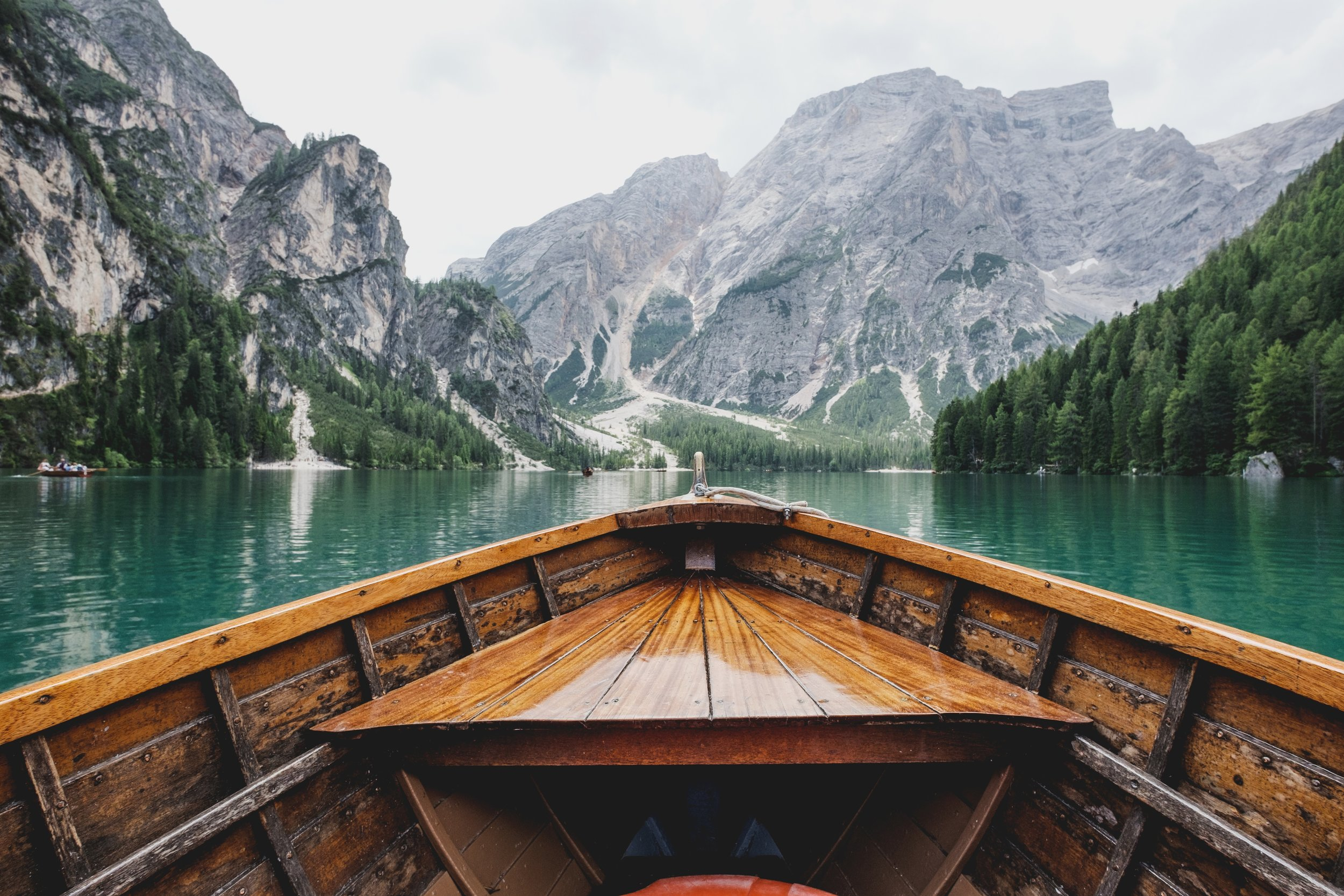 A Wild Quest To Uncover Success And Find Your Why - Photo by Luca Bravoon Unsplash