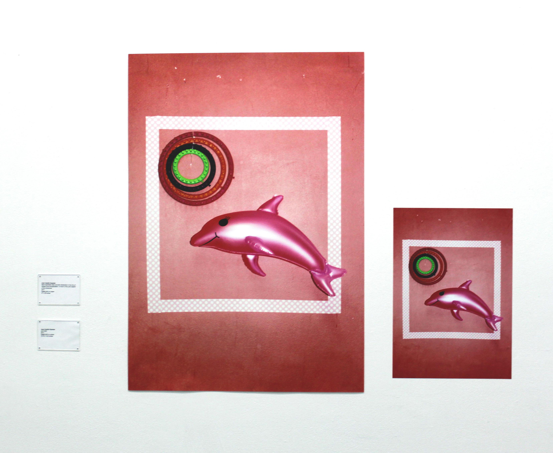 New-Colombian Neo-concrete Abstraction in the Times of Global Post-conceptualism. In Honor of the Pink Dolphin of the Amazonas (2017), Digital matte print, 27 x 39 inches;  And Child (2017) Digital print on sticker, 13.75 x 19.5 inches