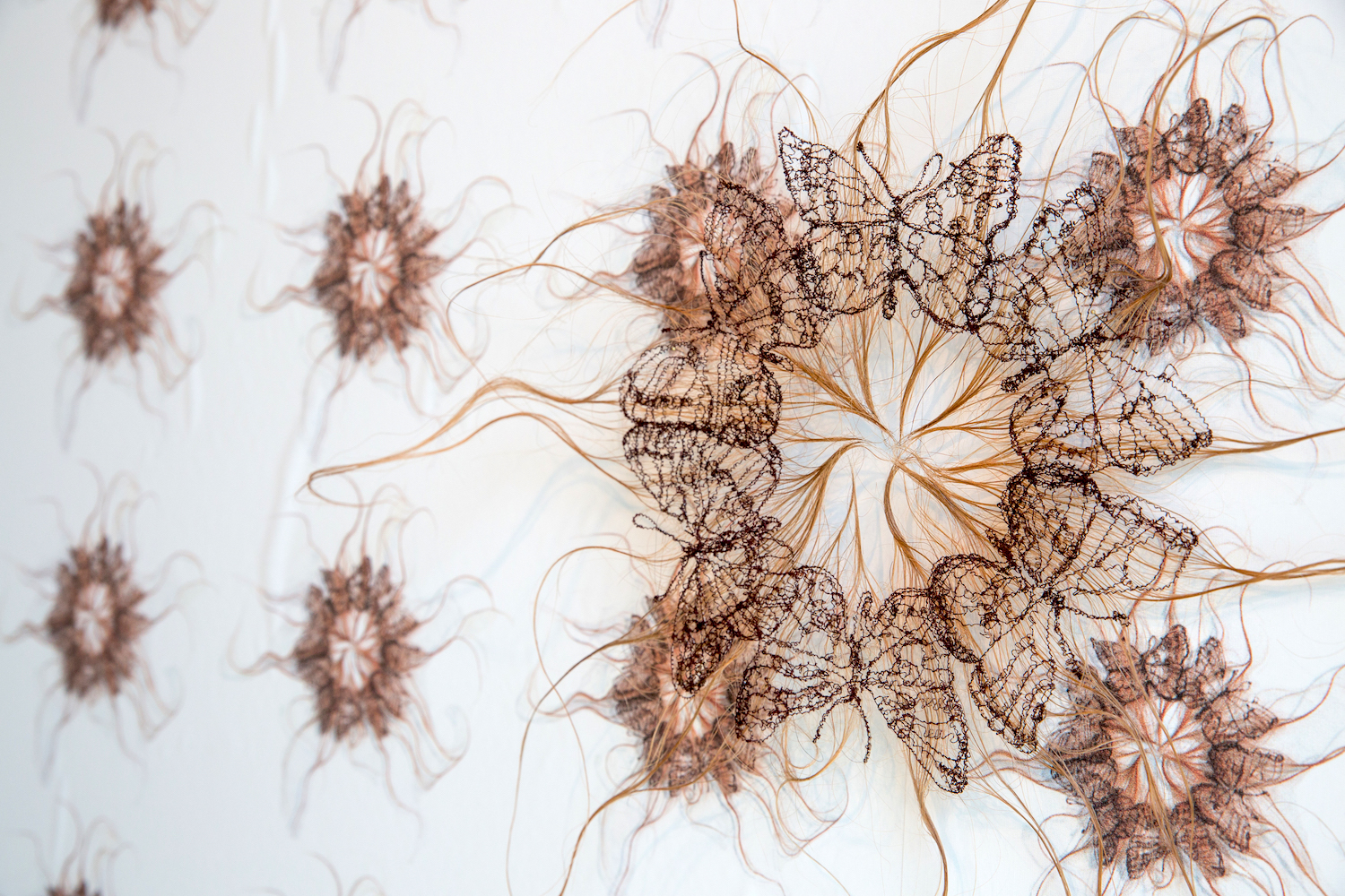 Extinction as a Parlor Game, detail view showing Patriarchal Orifice #2: Boloria Frigga (Frigga Fritillary) , Thread stitched on human hair, insect pin, styling products, 18 x 16 x 1 inches, installed at the Lord Hall Galleries, University of Maine, 2016