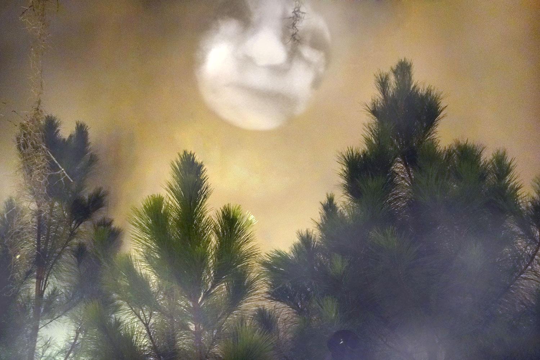 MoonProjection_WMA_2c.jpg