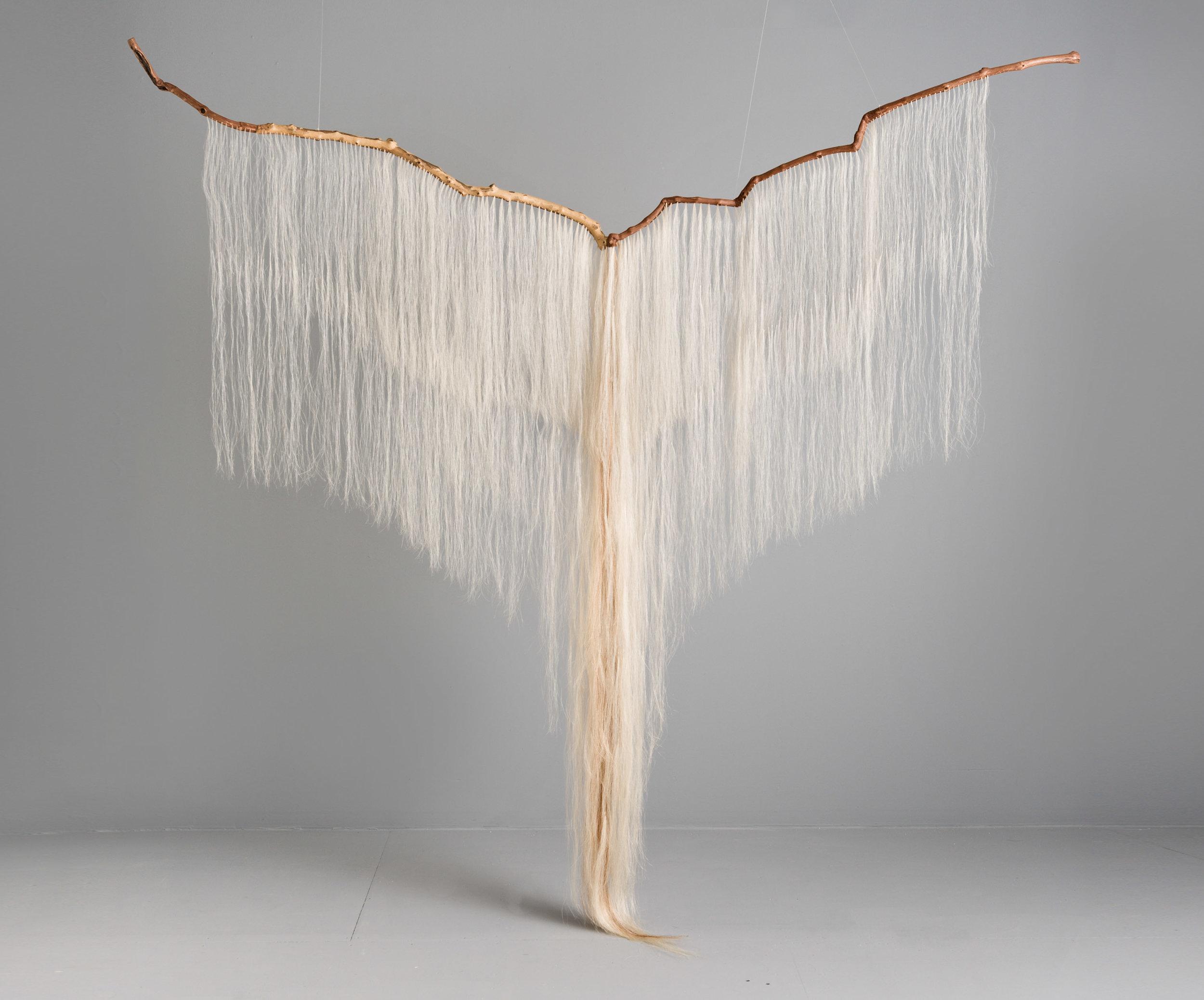 Continuum;  grapevine, sycamore, horse hair; 100 x 103 x 12 inches