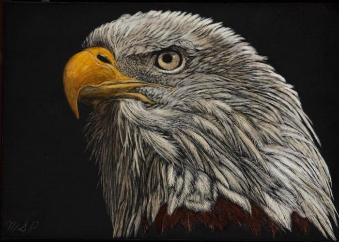 Eagle Eye II website.jpg