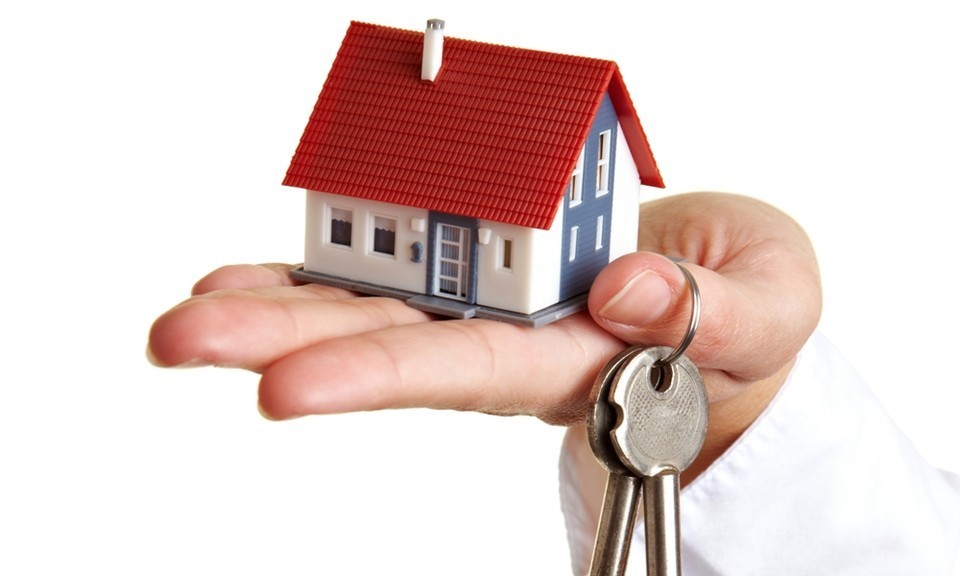 Property and Letting Agents