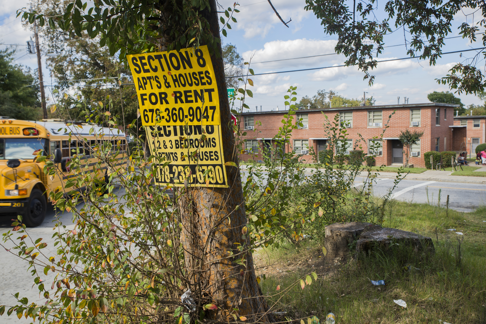 Yellow signs advertising Section 8 housing line the street between Tindall Heights in Macon, Ga. and neighboring homes.  | GRANT BLANKENSHIP