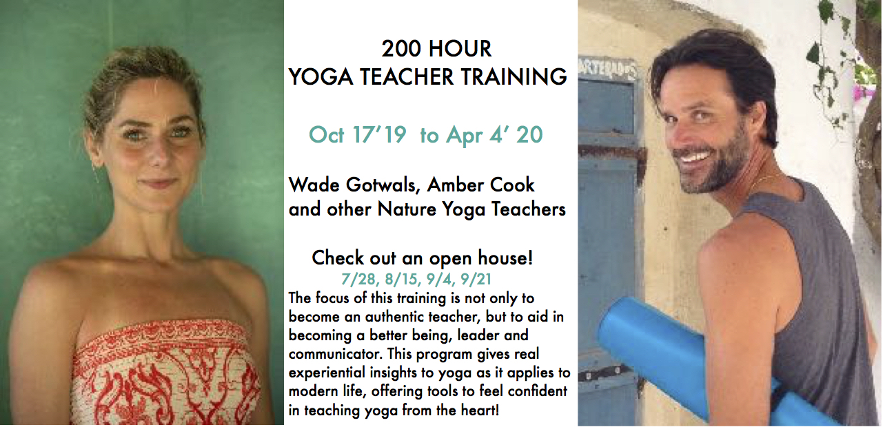 Chicago Yoga Teacher Training Wade Yoga