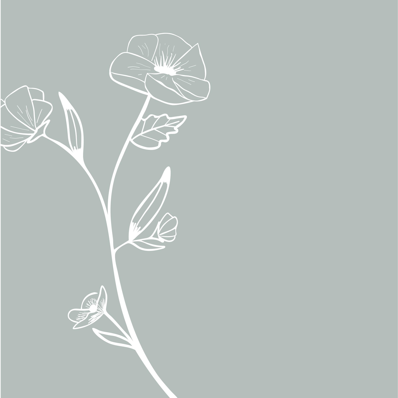hayley bigham designs-tulsa graphic designer-Kristi Holland-Watercolor Artist-floral illustration-logo design