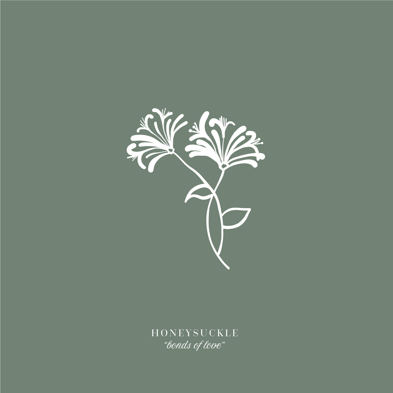 HayleyBighamDesigns-HProctorPhotography-Rebrand-FloralIllustrations.jpg