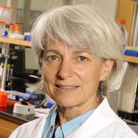 Stephanie Sherman, PhD