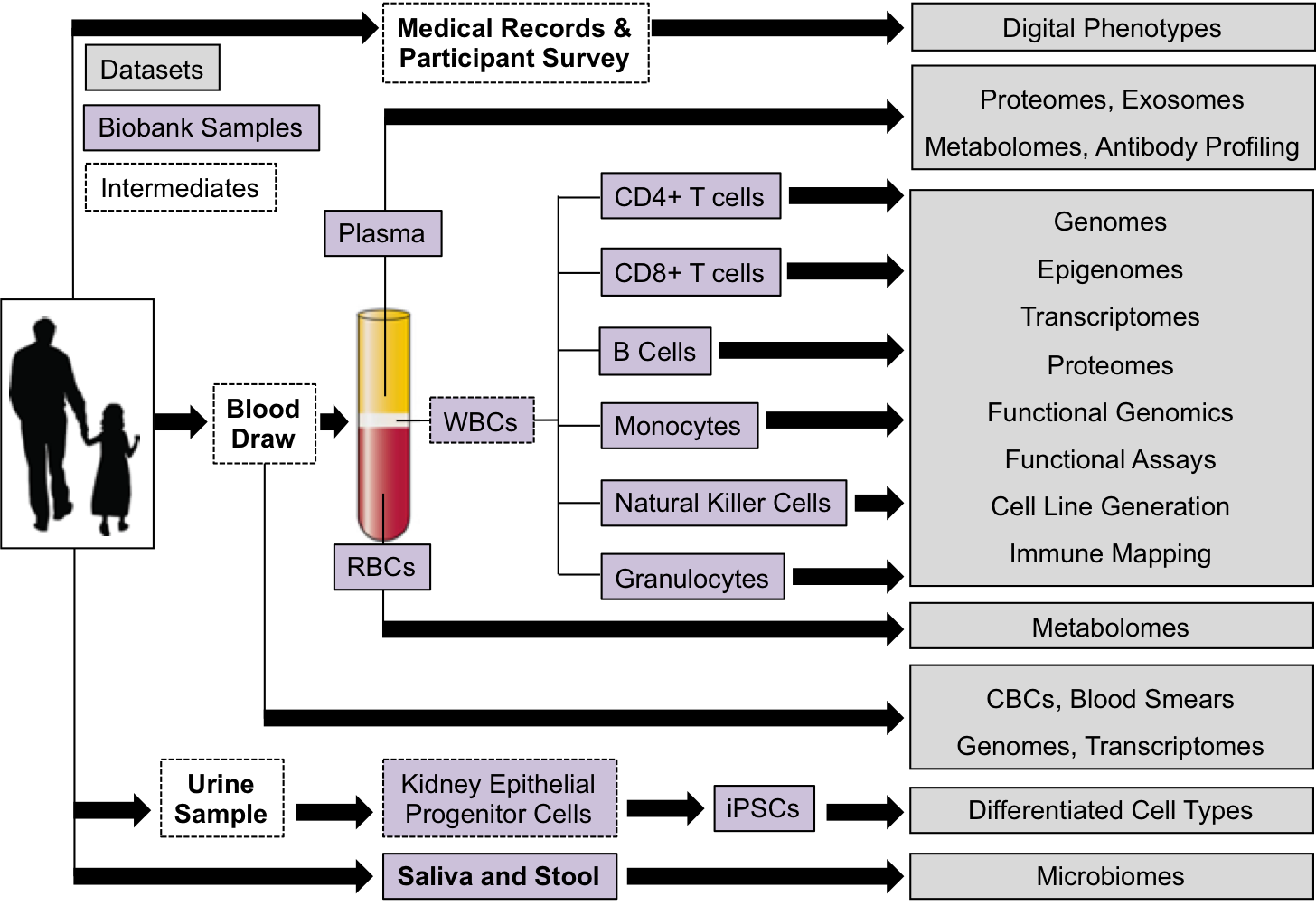 An overview of all the biobank samples to be collected and datasets to be generated by the Human Trisome project.  (WBC - white blood cell. RBC - red blood cell. CBC - complete blood count. iPSC - induced pluripotent stem cell.)
