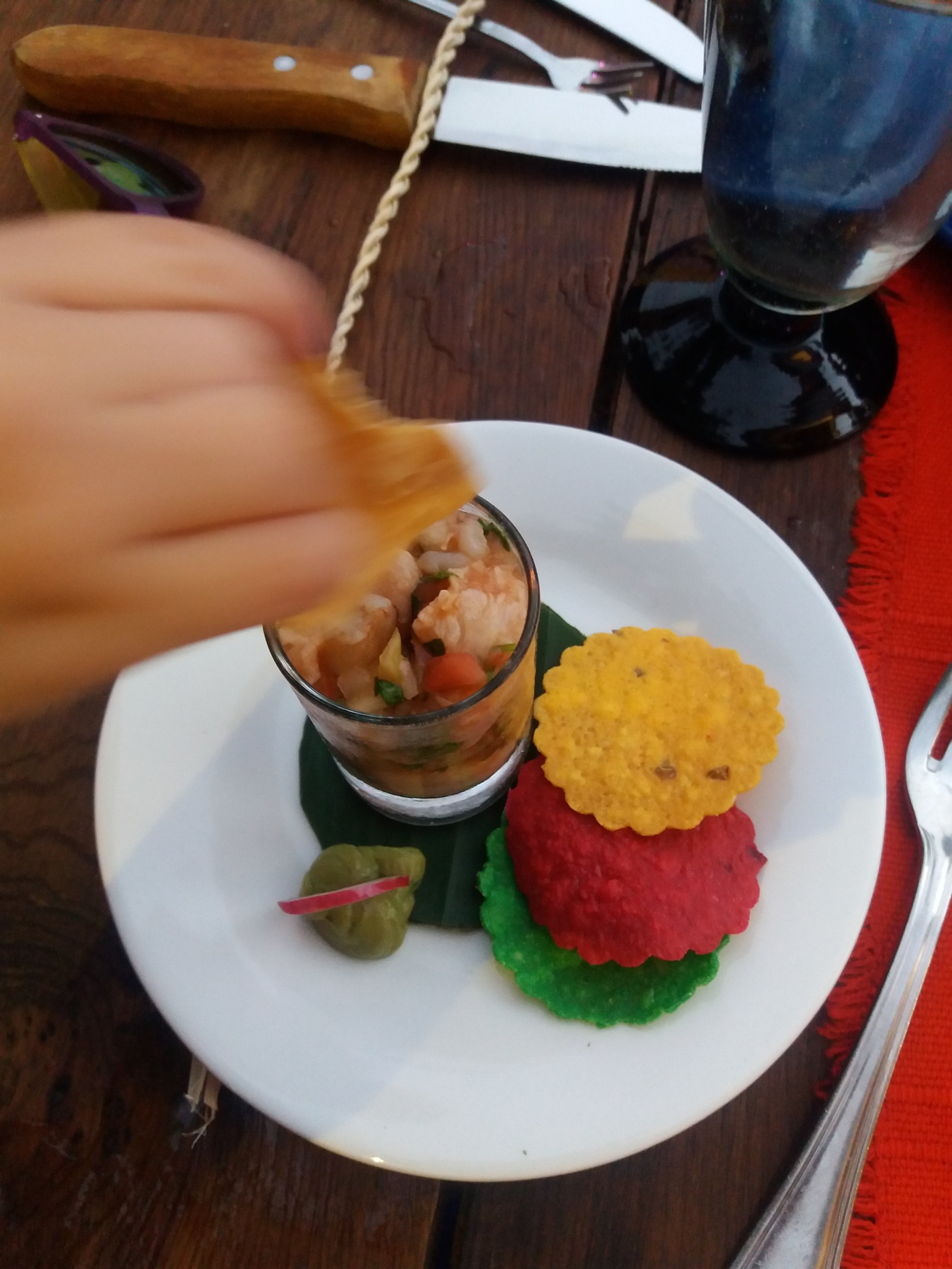 Ceviche Shooter