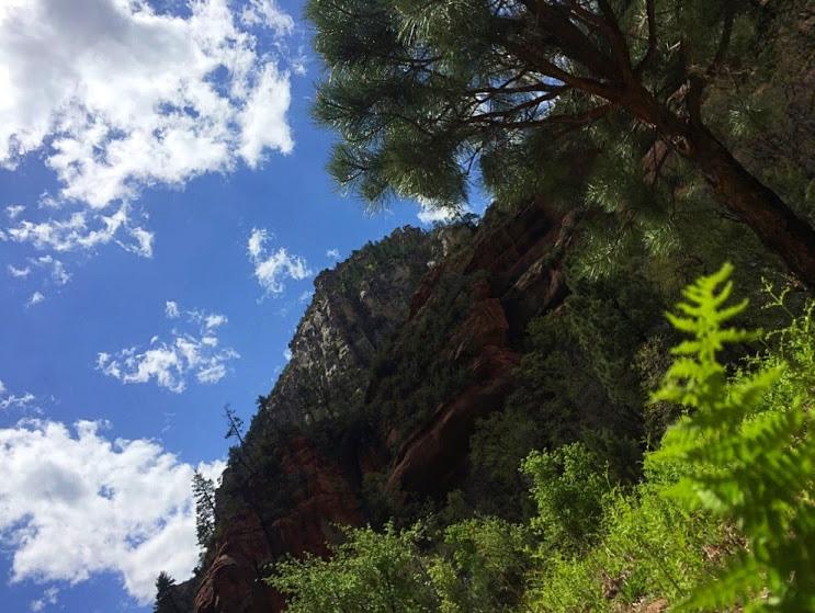 Looking up at the canyon walls towering above,providing shade.