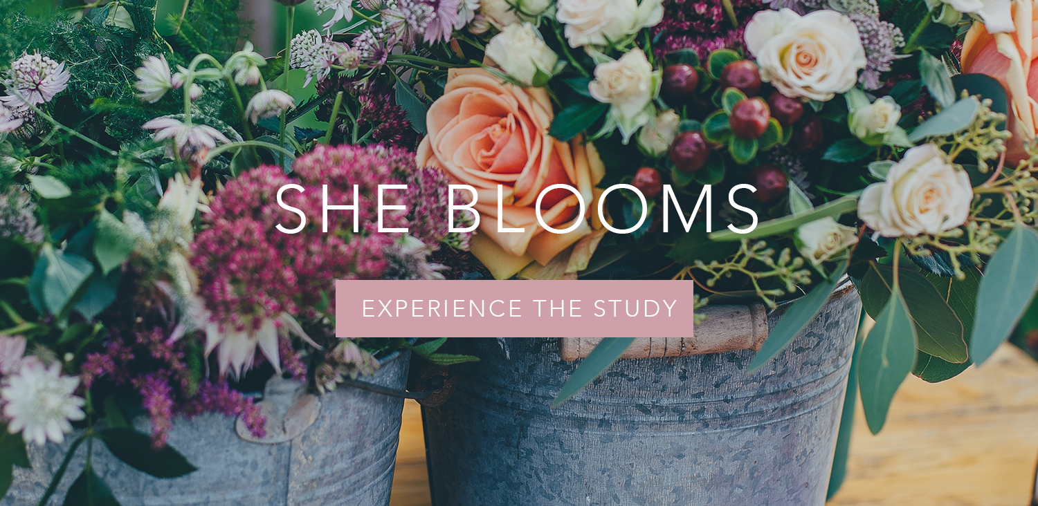 featured_study_blooms.jpg