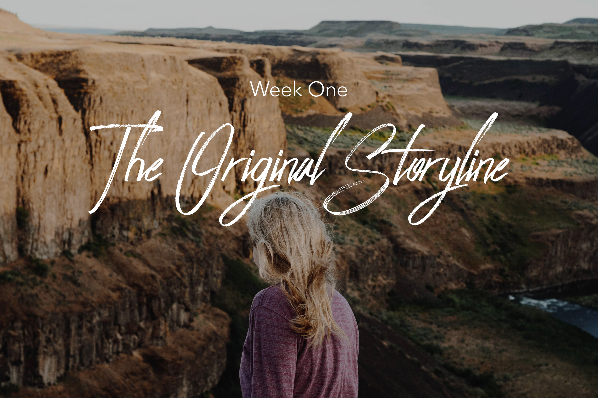 Journey Bible Study | The Original Storyline | Dream Chasing with God | Bible Studies for Women