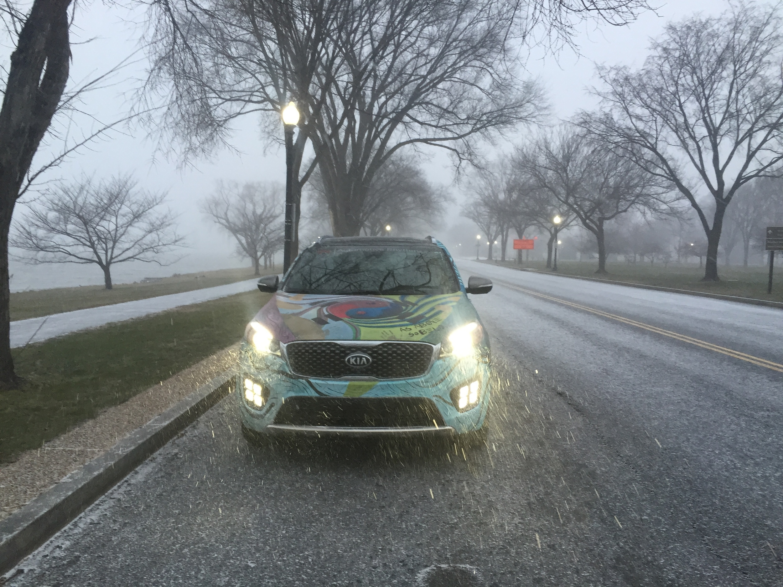 Kia Sorento Art Car - West Potomac Park
