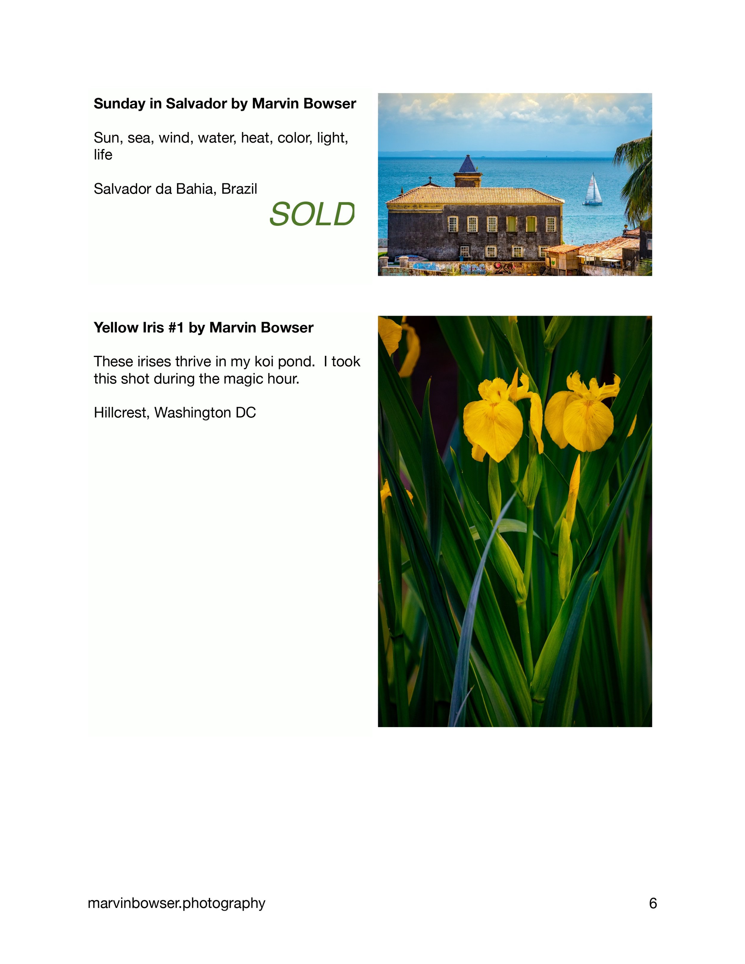 Color Light Movement Catalog-6.jpg