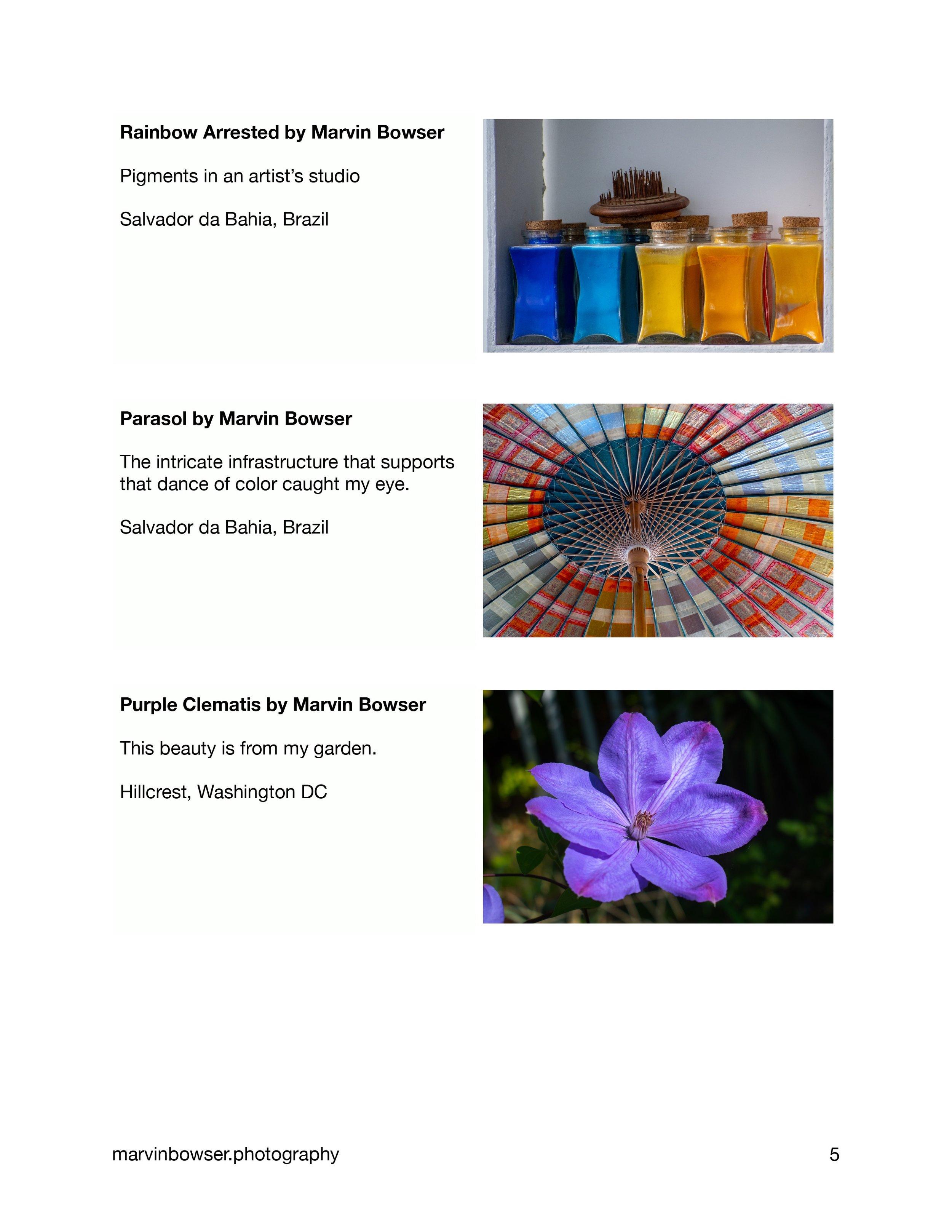 Color Light Movement Catalog-5.jpg