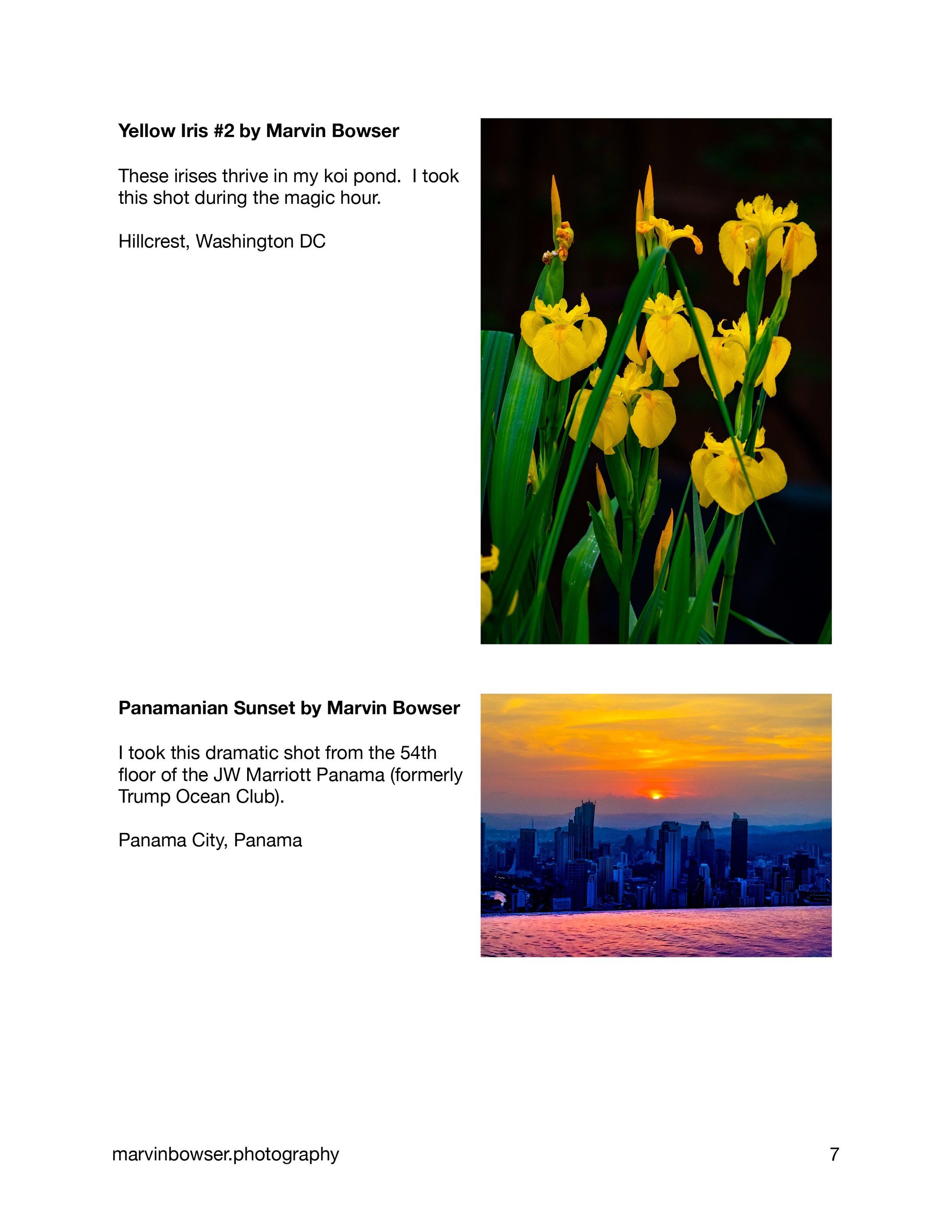 Color Light Movement Catalog-7.jpg