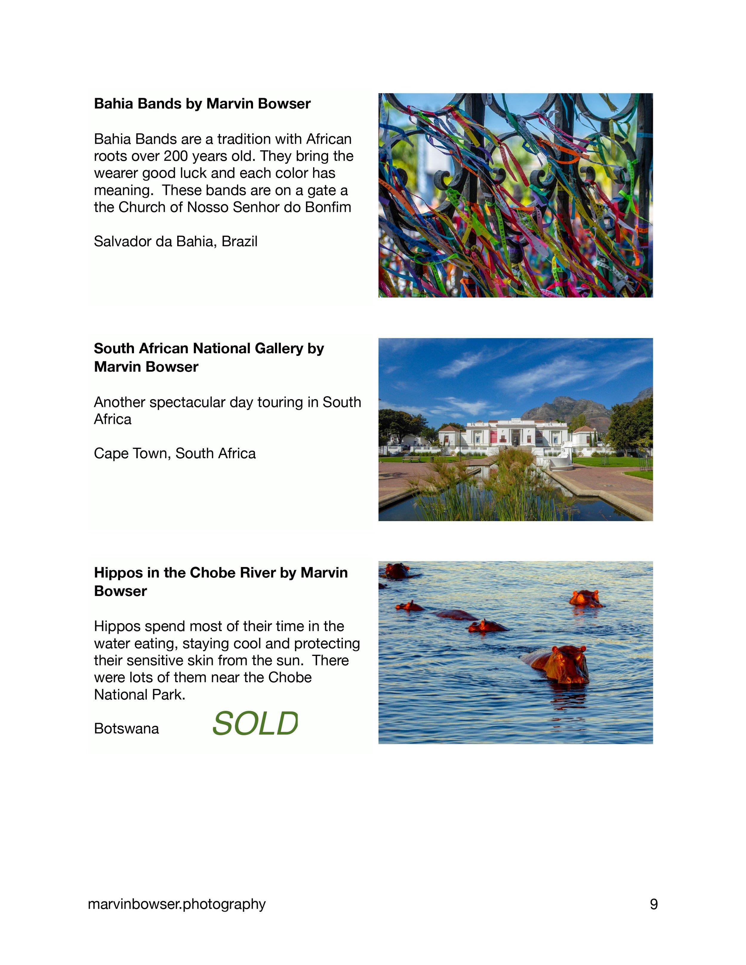 Color Light Movement Catalog-9.jpg