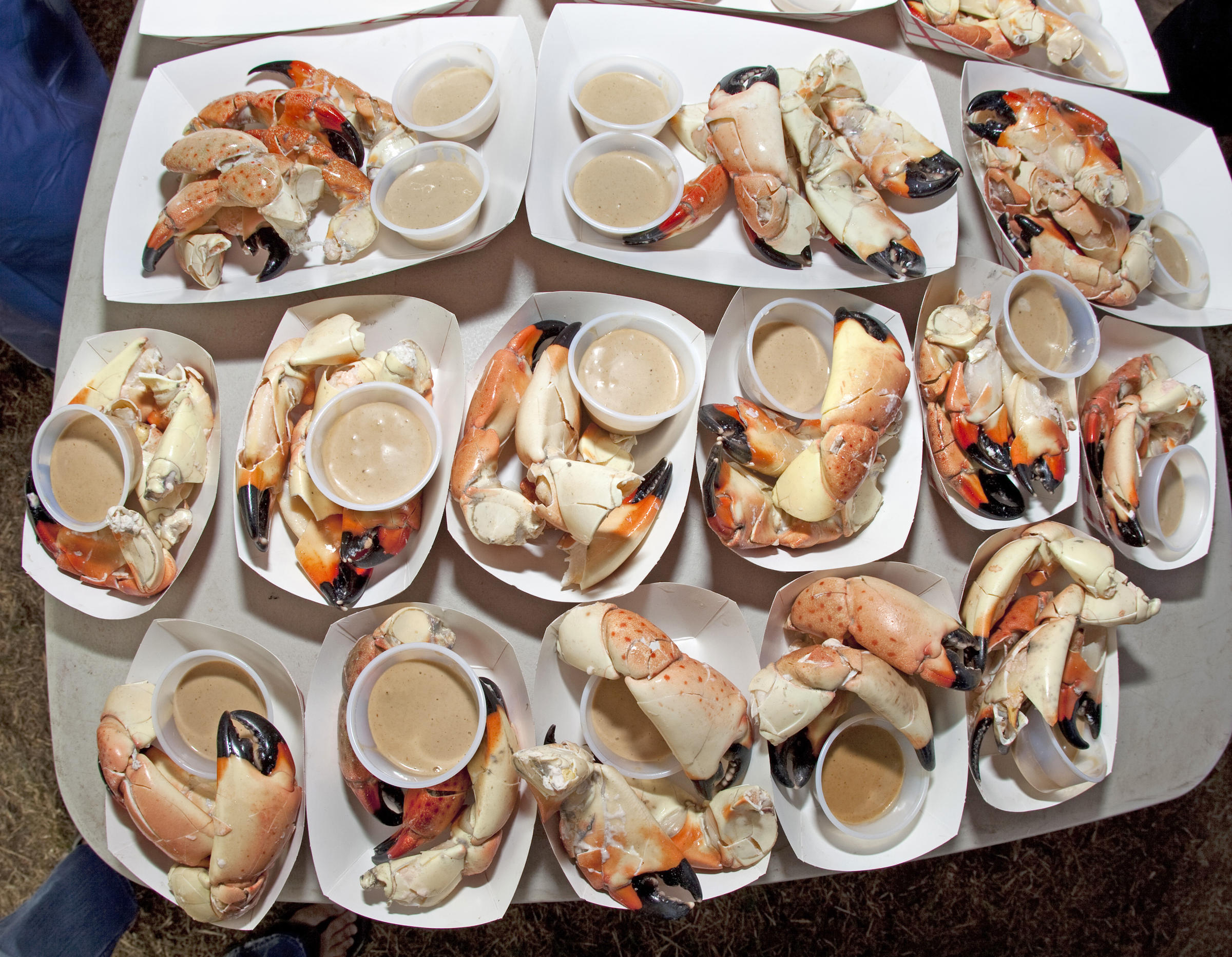 stone_crab_bob_care.jpg