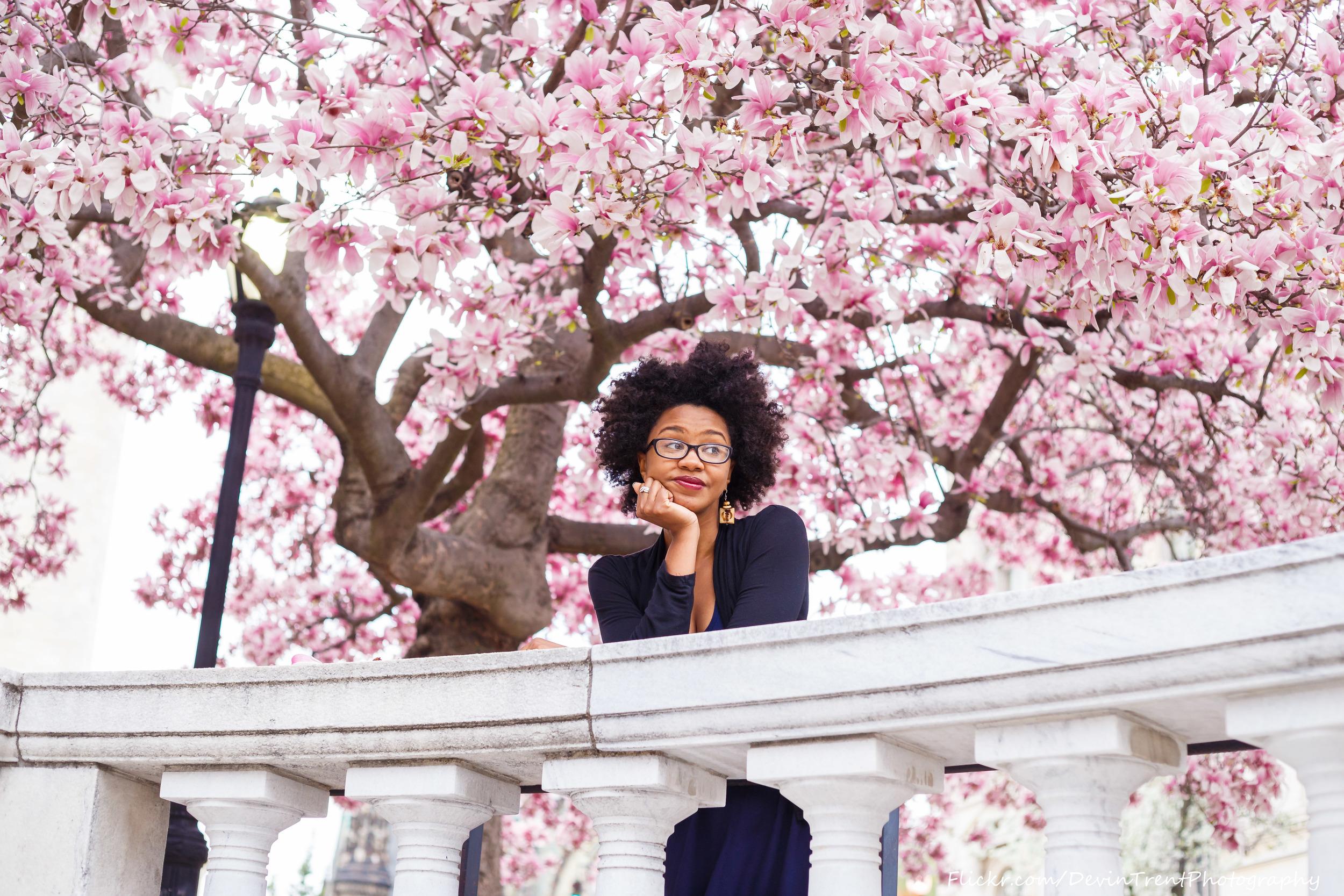 Cherry Blossoms-11.jpg