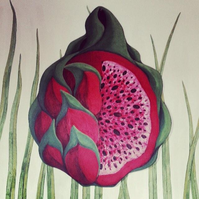 Yummy Pitaya / Dragonfruit
