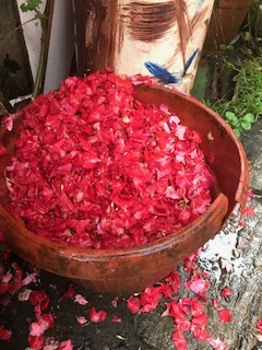 bowl of petals Bali.jpg