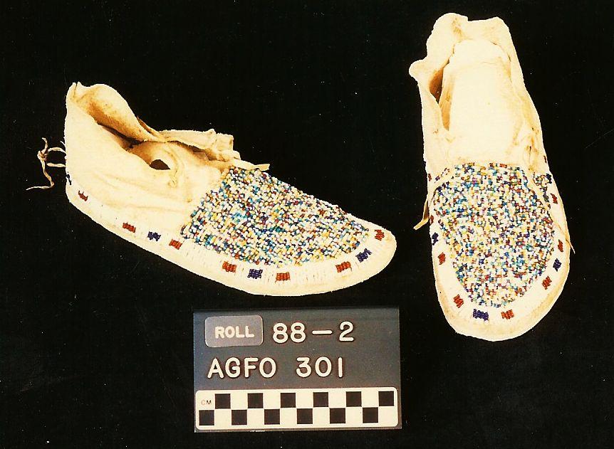 agfo301_f.JPG