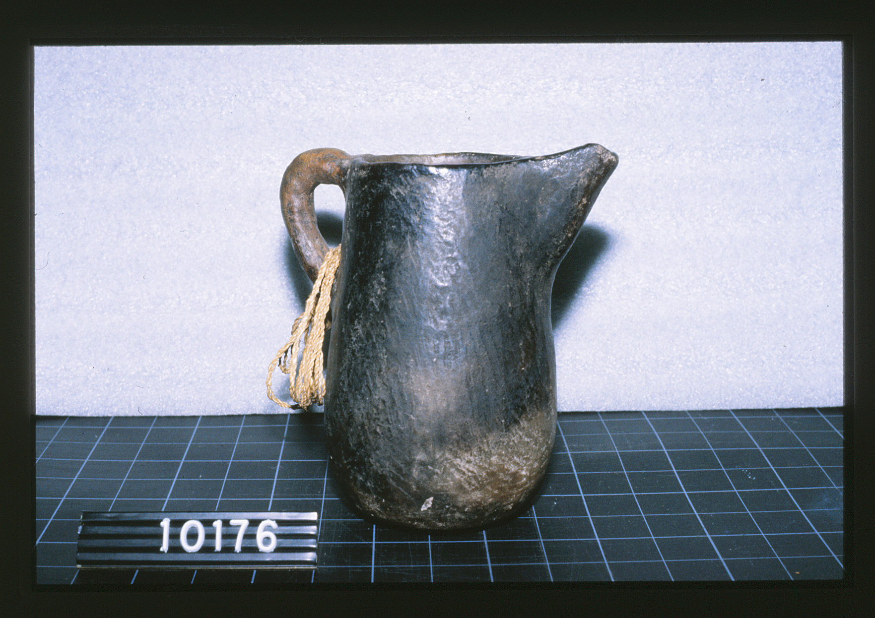 CUMNH pitcher 2.jpg