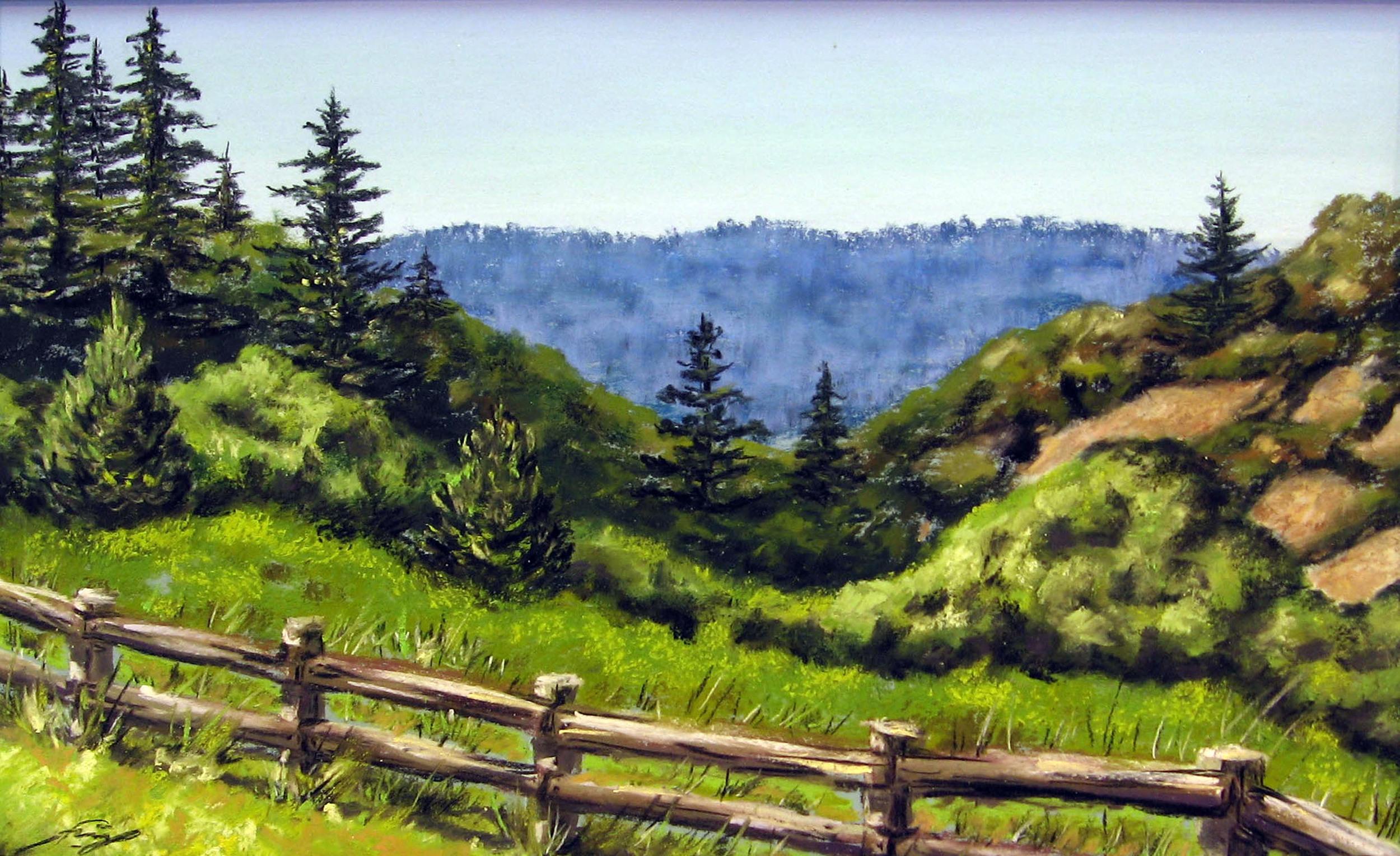 Skyline Ridge, Sunny Day