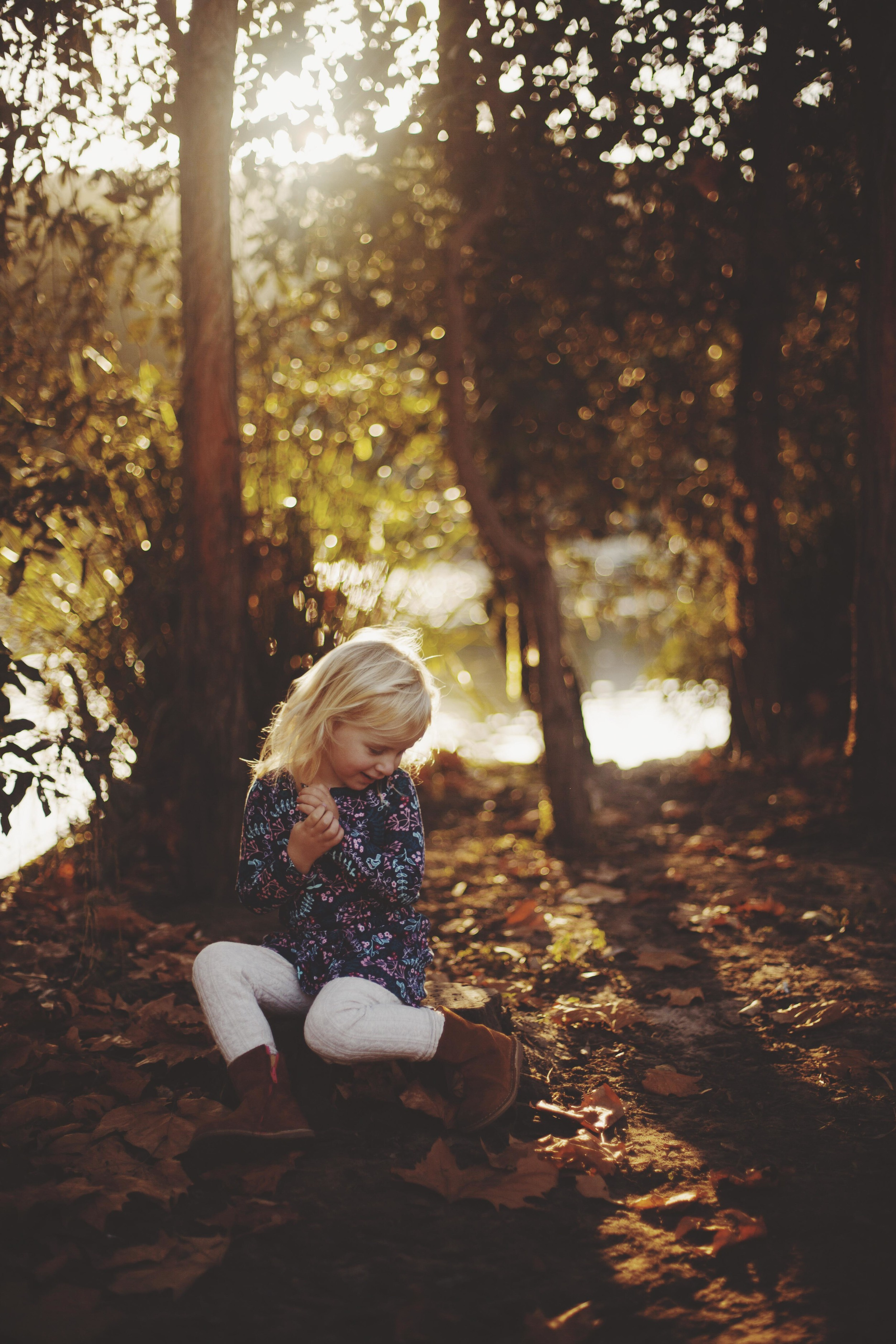 young girl sitting amongst the autumn leaves