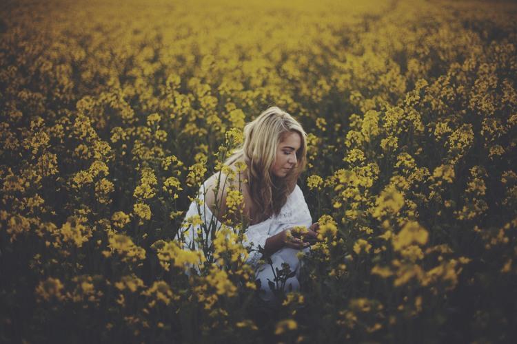 WILD FLOWER -