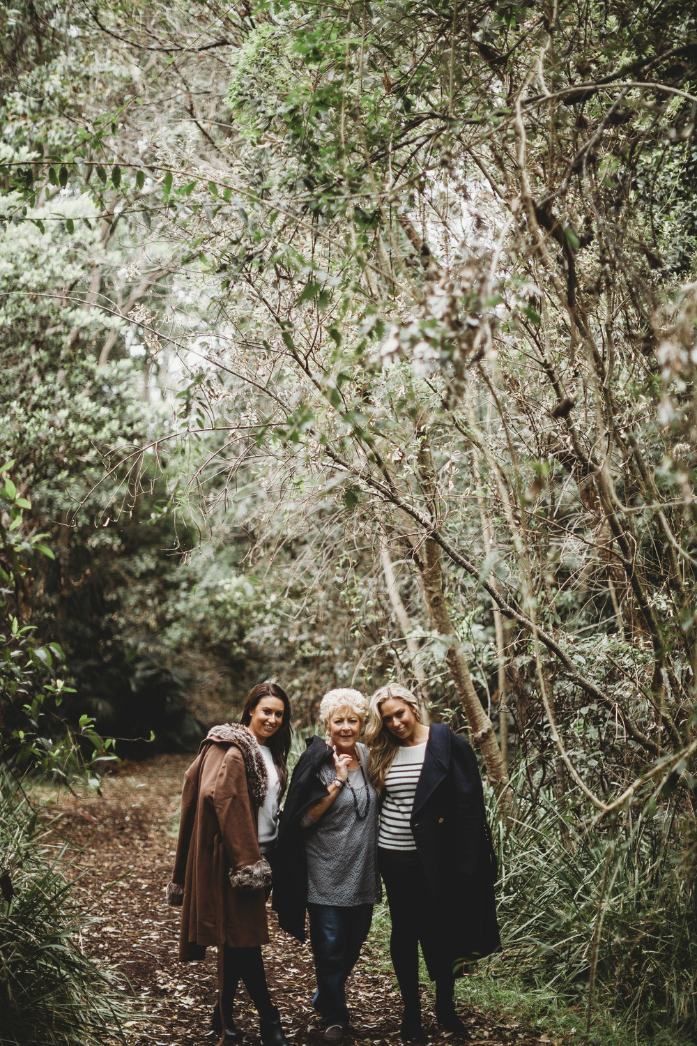 THE SHEILDS -