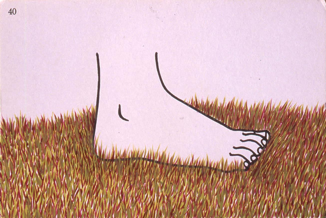 Foot, 2002