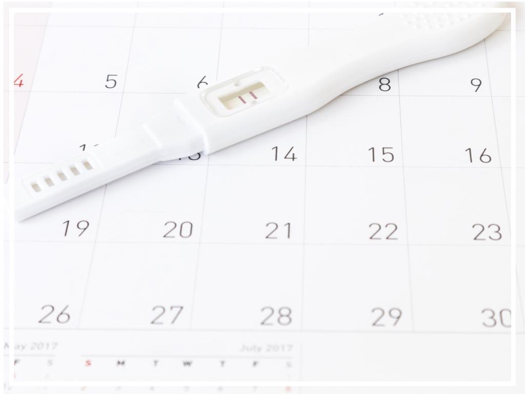Fertility Support -