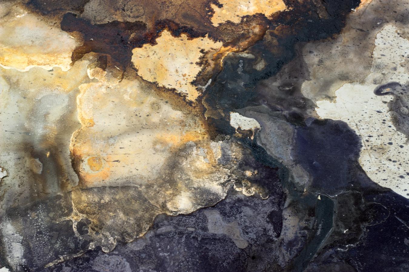 Oak gall ink, rust  2016