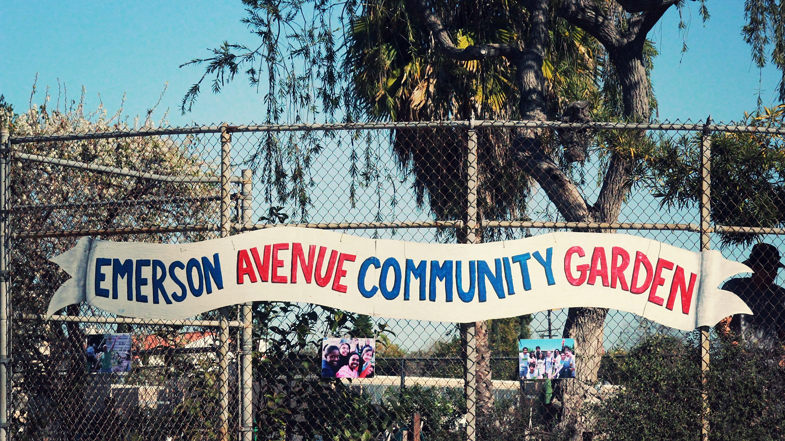 emerson ave community garden workday