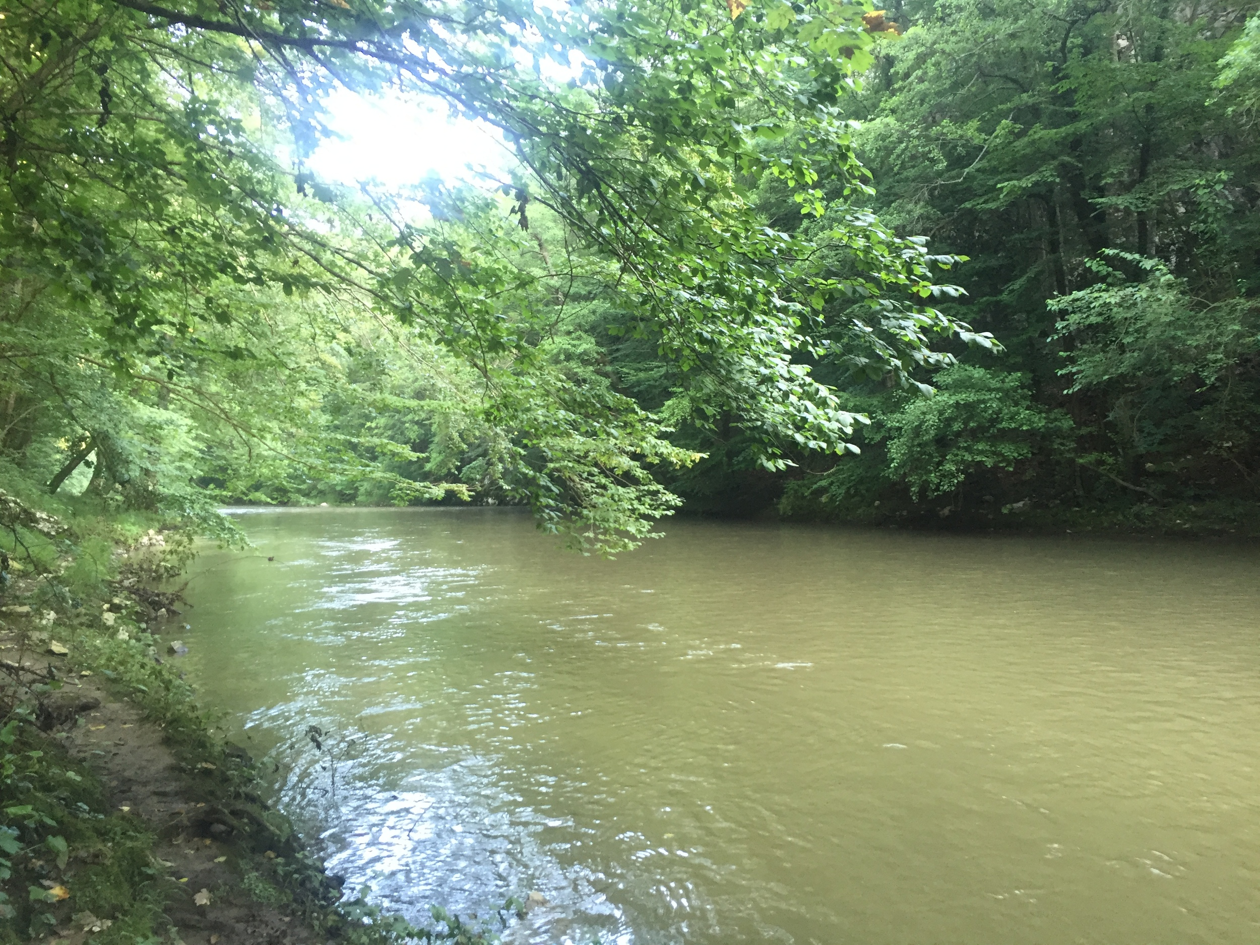 River walks.