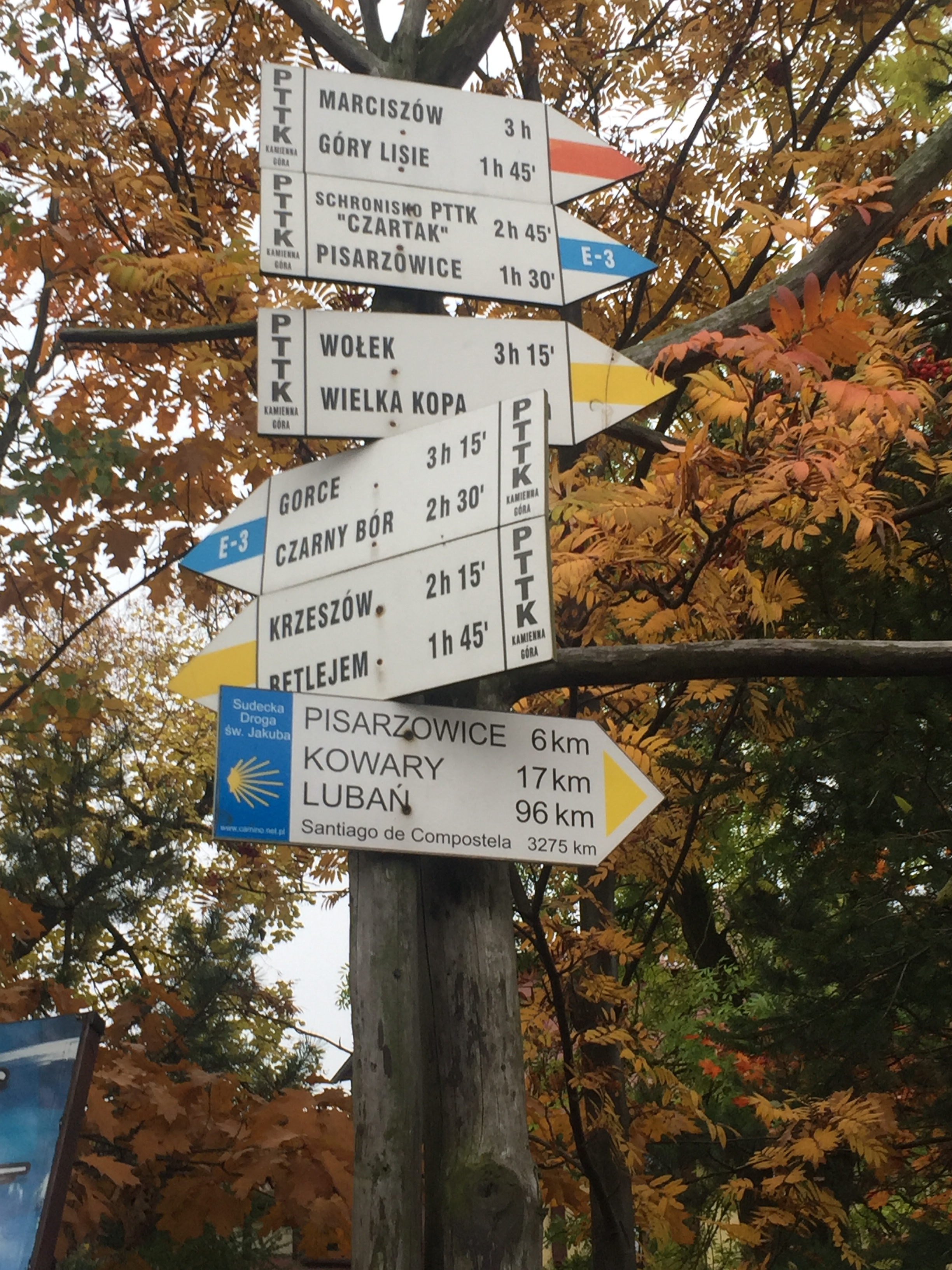 Signs from the Polish hiking group PTTK.