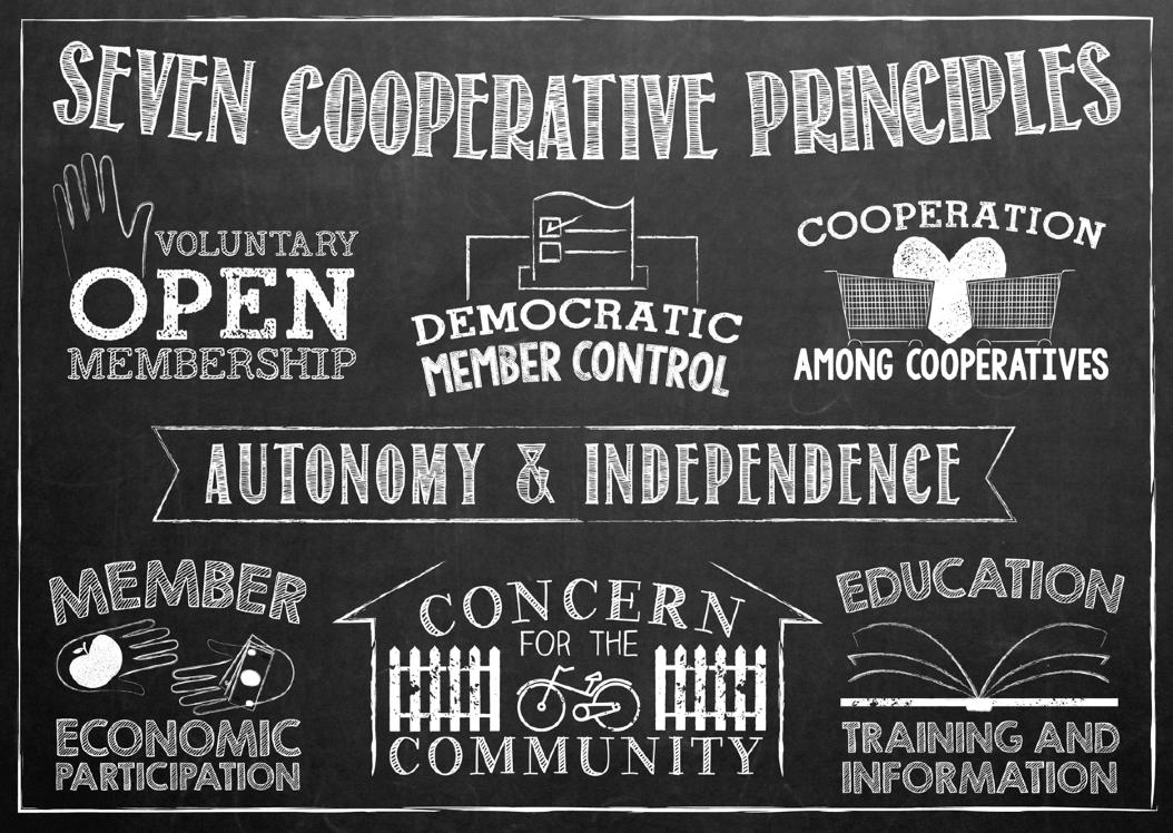 co-op-principles.png