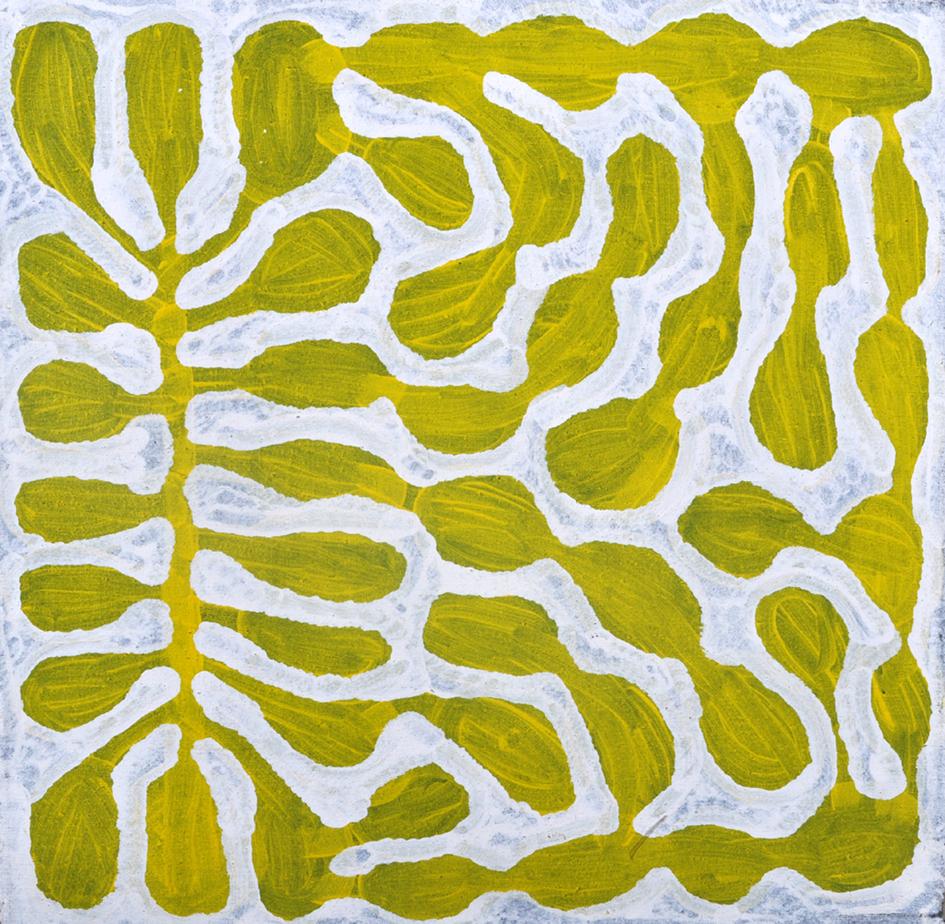 Watiya Juta'   , 60 x 60cm, acrylic on linen