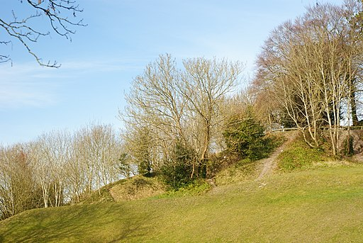 St Giles's Hill, Winchester, in 2010.  Peter Trimming/Geograph.org ,  CC BY-SA