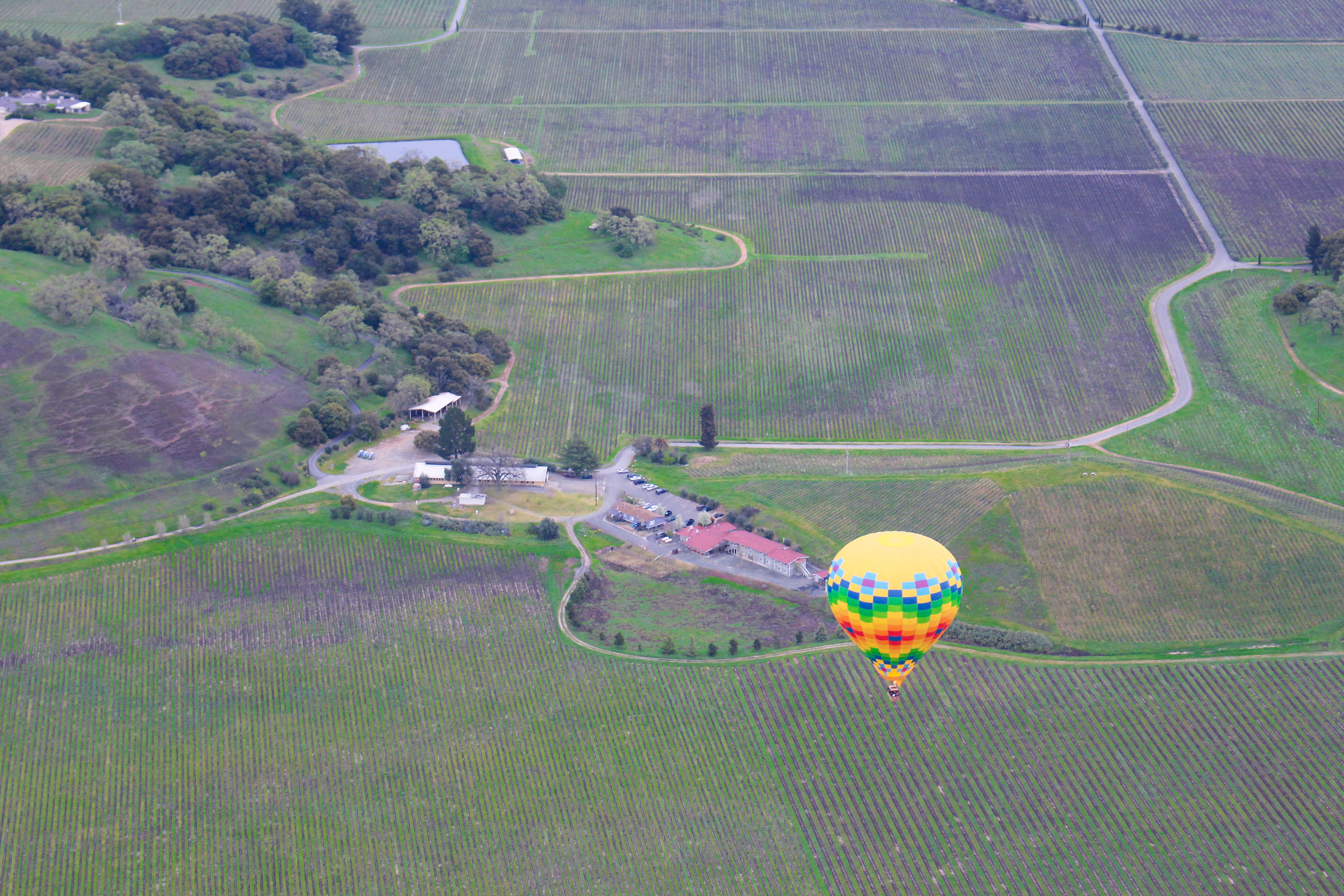 SUGAR & STAMPS - Hot Air Balloon RIDE OVER NAPA VALLEY