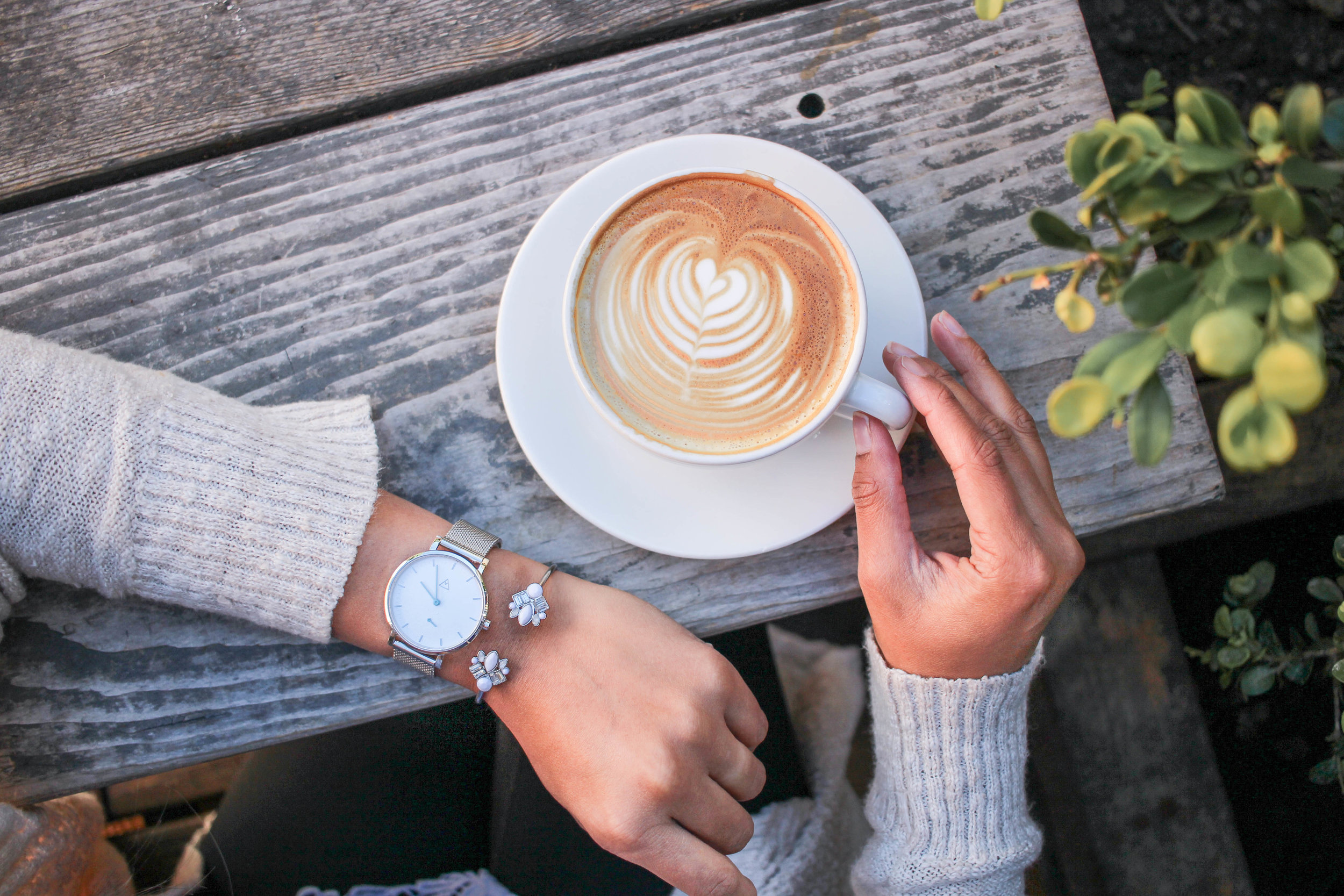Best Coffee Shops in San Francisco: Hollow