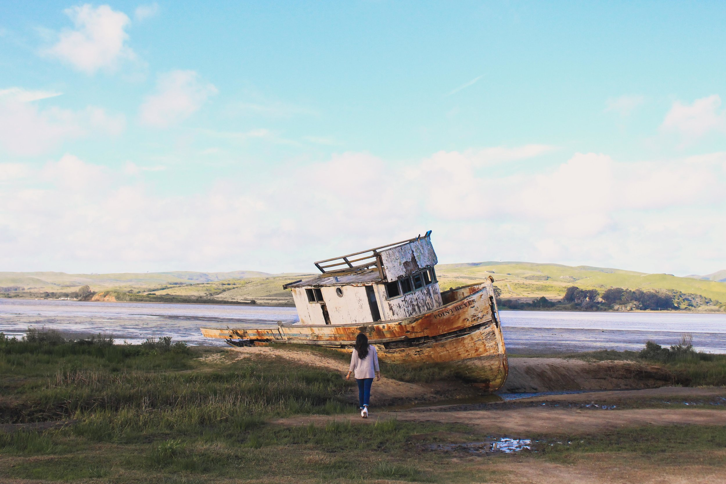 Point Reyes shipwreck, inverness, california