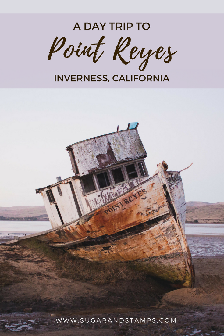 a day trip to point reyes, inverness, california