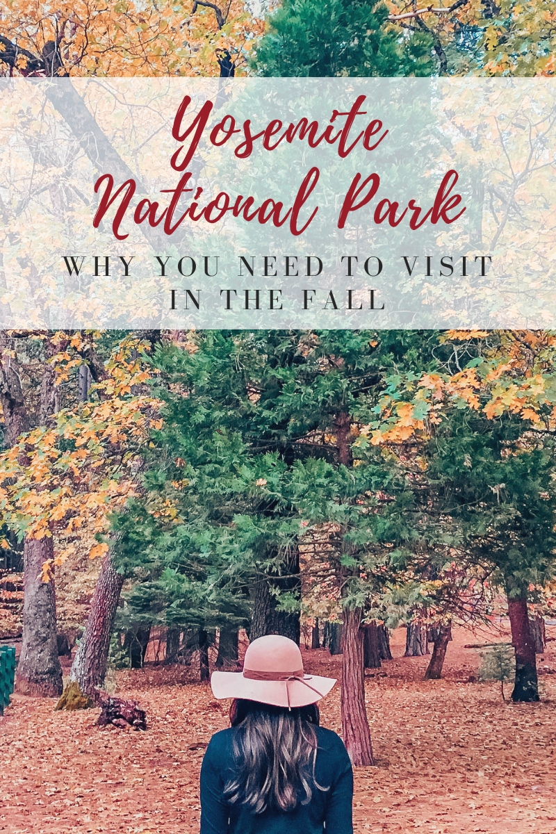 Why You Need to Visit Yosemite in the Fall